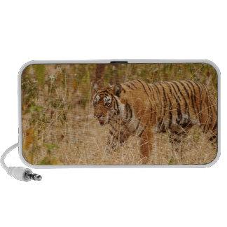 Tigre de Bengala real que camina alrededor del arb Portátil Altavoces