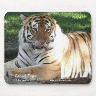 Tigre de Bengala Alfombrillas De Raton