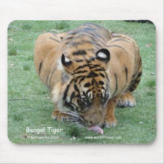Tigre de Bengala Tapete De Raton