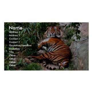 Tigre de Bengala Plantillas De Tarjetas De Visita