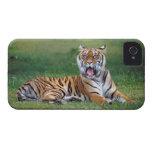 Tigre de bostezo carcasa para iPhone 4 de Case-Mate