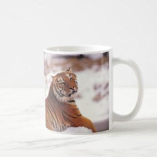 Tigre de descanso taza