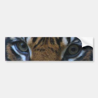 Tigre de eyes etiqueta de parachoque