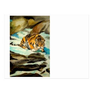 Tigre de la acuarela tarjetas postales