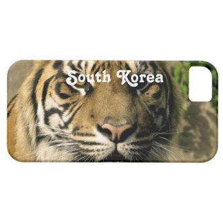 Tigre de la Corea del Sur iPhone 5 Funda