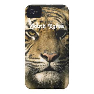 Tigre de la Corea del Sur Case-Mate iPhone 4 Cárcasas