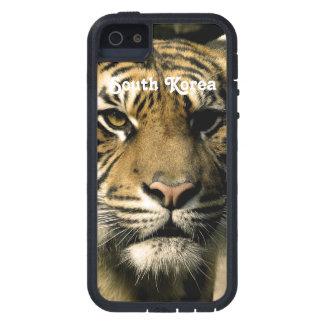 Tigre de la Corea del Sur iPhone 5 Fundas