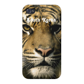 Tigre de la Corea del Sur iPhone 4 Carcasas