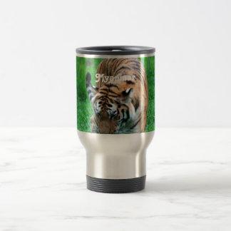 Tigre de Myanmar Tazas