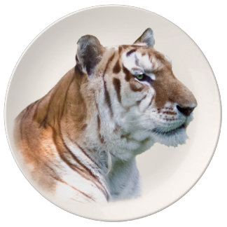 Tigre de ojos verdes en perfil platos de cerámica