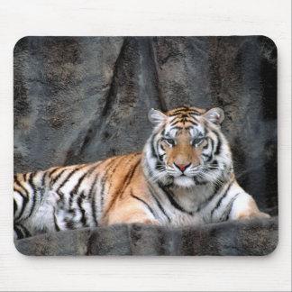 Tigre de reclinación Mousepad Tapetes De Raton