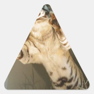 ¡Tigre de salto - mire sus patas! Pegatina Triangular