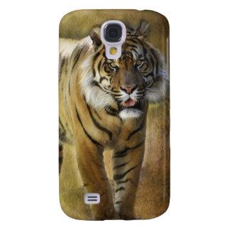 Tigre de Sumatran