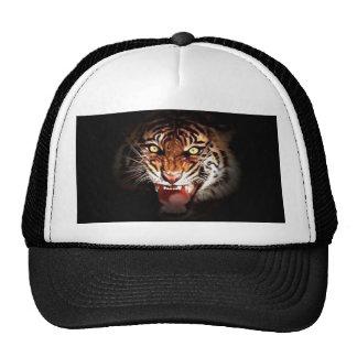 Tigre de Sumatran Gorros