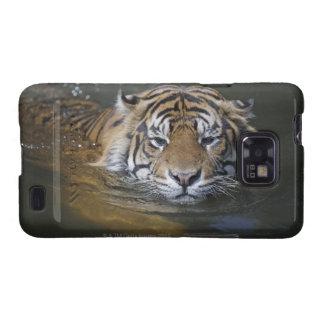 Tigre de Sumatran, sumatrae del Tigris del Panther Samsung Galaxy SII Funda