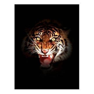 Tigre de Sumatran Postal