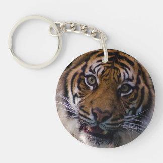 Tigre de vagabundeo de Sumatran Llavero