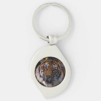 Tigre de vagabundeo de Sumatran Llaveros