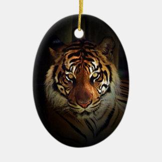 Tigre Ornamentos De Reyes