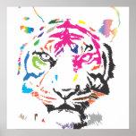 Tigre del arco iris poster