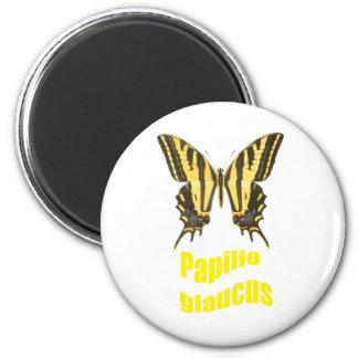 Tigre del este Swallowtail Imán Redondo 5 Cm