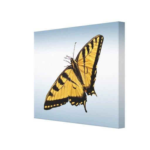Tigre del este Swallowtail Impresión En Lienzo