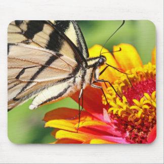 Tigre del este Swallowtail Mousepad