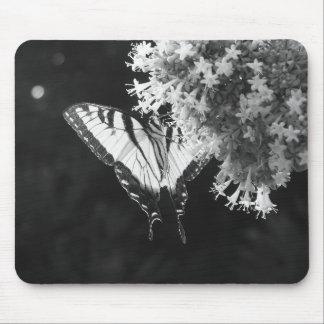 Tigre del este Swallowtail Tapetes De Raton