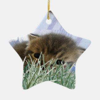 Tigre del imitador en la hierba adorno de cerámica en forma de estrella