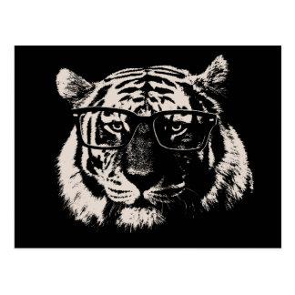 Tigre del inconformista con los vidrios postales