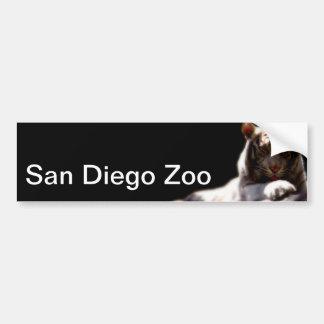 Tigre del parque zoológico de San Diego Pegatina De Parachoque
