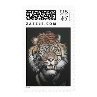 Tigre del rugido en tablero del rasguño sello