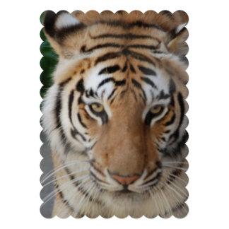 Tigre dulce