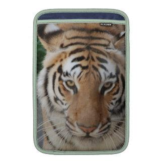 Tigre dulce fundas macbook air