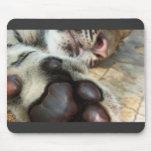 Tigre el dormir alfombrillas de ratones