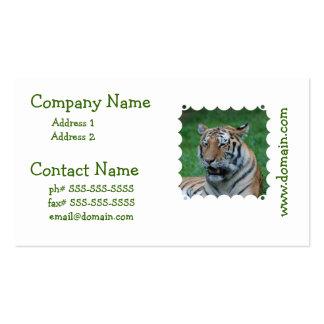 Tigre el gruñir tarjeta de negocio