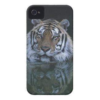 Tigre en agua iPhone 4 Case-Mate fundas