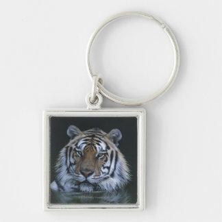 Tigre en agua llavero cuadrado plateado