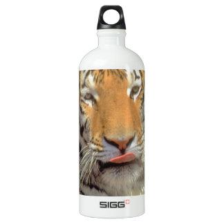 Tigre en cierre del agua para arriba