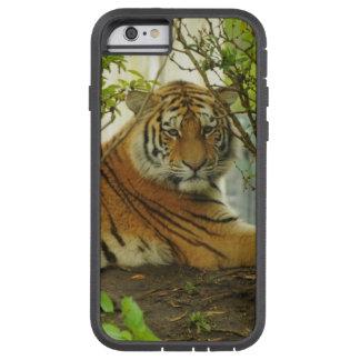 Tigre en el bosque funda de iPhone 6 tough xtreme