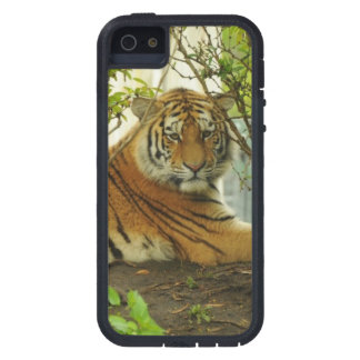 Tigre en el bosque funda para iPhone 5 tough xtreme