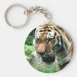 Tigre en el llavero del parque zoológico de Bronx