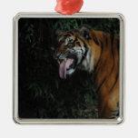 Tigre en el parque zoológico ornamento para arbol de navidad