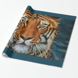 Tigre en fotografía del agua papel de regalo