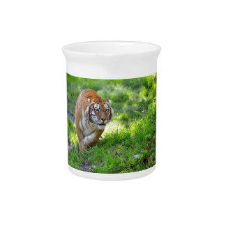 Tigre en hierba jarron