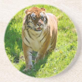 Tigre en hierba posavasos manualidades
