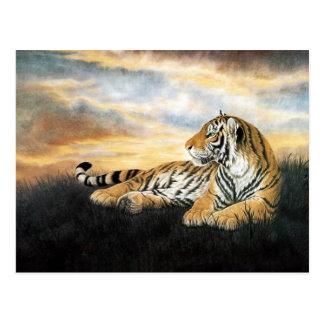 Tigre en la puesta del sol, arte chino clásico postales