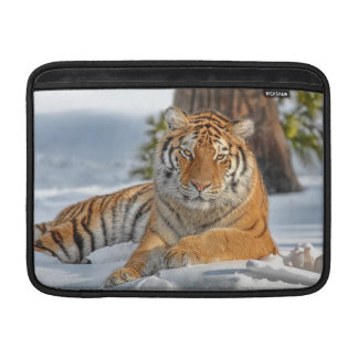 Tigre en nieve fundas macbook air