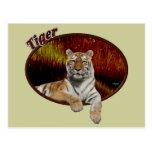 Tigre en óvalo postal