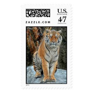Tigre en ráfagas de nieve timbre postal